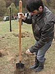 Tree Planting in Shirak Region