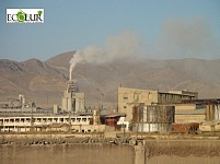 When Will Forest near Ararat Cement Plant Appear?