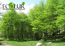Green-covered and Clean Communities for 2013 Publicized: Yerevan Not Among Them