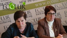 Most Women in Armenian Villages Harmed with Pests