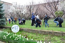 30000 Trees and 10000 Bushes Planted in Yerevan on 11April