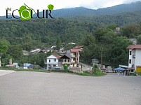 "Missing Forbidden Forest: ""Dilijan National Park"" Tavush Region (Photos)"