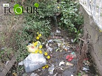 Haghartsin Villagers Beating Alarm Signal: Village Became Victim of Garbage and Sewage