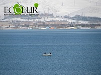 Trout and Whitefish Species Fishing To Be Stopped in Lake Sevan and Rivers Flowing to Lake Sevan