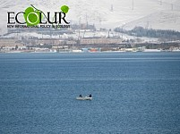 Natural Reproduction of Trout Not Ensured in Lake Sevan