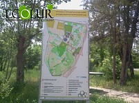 Yerevan Municipality To Green Botanical Garden and Tsitsernakaberd Slope