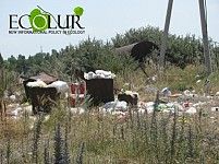 Alarm Signal: Garbage May Be Dumped into Lake Sevan