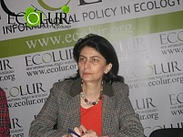 Nazeli Vardanyan: Amendments to RA Forest Code Bear Huge Risks