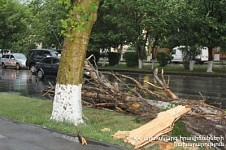 379 Cases Recorded only in Yerevan Due to Strong Wind