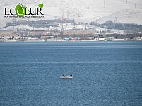 Nature Protection Ministry Calling to Refrain from Illegal Fishing and Sale in Lake Sevan during Ban Period