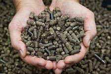 Small Village in Armenia: Turning Biological Waste into Fuel Pellets