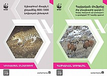 How World Wildlife Day Is Celebrated in Yerevan?