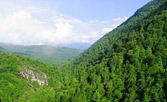More Restrictions To Be Expected in Dilijan National Park