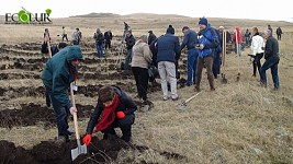 10 Communities in Shirak and Aragatsotn Regions Will Combat Erosion Through Afforestation