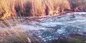 Inspectors Could Not Find Out From Where Foam-Like Mass Flows into Hrazdan River