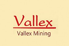 'Vallex' Stopped Teghout Mining for Non-Fixed Term