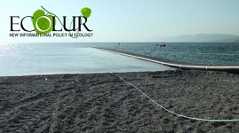 EcoLur's Enquiry: What Impact Lake Sevan Trout Reserve Recovery Program Has on Lake Sevan?