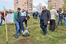 10,000 Trees and Bushes Planted during Cleaning-Tree Planting Day in Yerevan