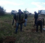 Tree Planting Carried Out in SPANS and Divisions Subject to State Forest Committee