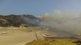 Fire in Amulsar Area: Urgent Measures Needed