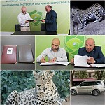 WWF Armenia and Inspection Body To Cooperate Within Leopard Conservation Project