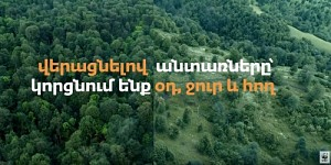A Video Clip Shot on Illegal Tree Felling in Armenia