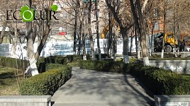 Funds Were Wasted By Showing Yerevan More Green Areas