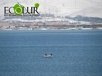 Fight against Poachers Shall Be Carried out in Lake Sevan and Not in Markets