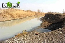 Who Is In Charge of Cleaning Armavir Canal from Sewage?