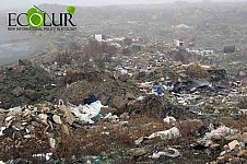 Results of Cleaning Day in Regions of Armenia