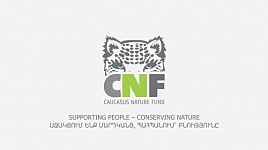 CNF Invested 4 Million Euros in Armenia Over 10 Years