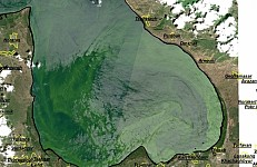 Blooming in Lake Sevan Has Unprecedented Scales: Satellite Images