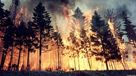 Russia Losing Colossal Amounts of Areas Because of Fires