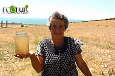 Drinking Water of Daranak Village Contaminated with Worms