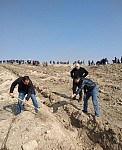 Officials and Residents Planted Over 600 Trees in Area of Non-Operating Mine Area