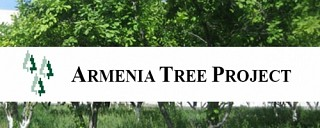 ATP To Conduct Tree Planting in Around 100 Ha Area in 3 Rural Communities in Lori Region