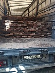 Transportation of Illegal Timber in Tavush Region