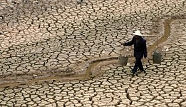 June 17 -  World Day to Combat Desertification and Drought