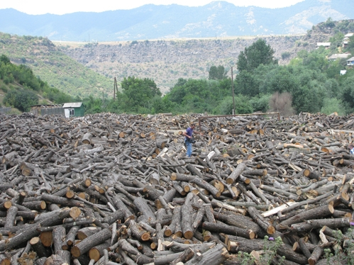DEMANDING TO STOP ARMENIAN NATURE ELIMINATION