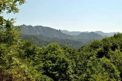 "'Dilijan' National Park Asserts: Besides ""Mountainous Armenia"" No Other Building Constructed in Recreation Zone"