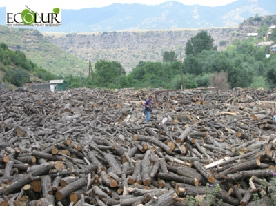 Greens Union of Armenia to Represent Teghut Project Alternative Analysis