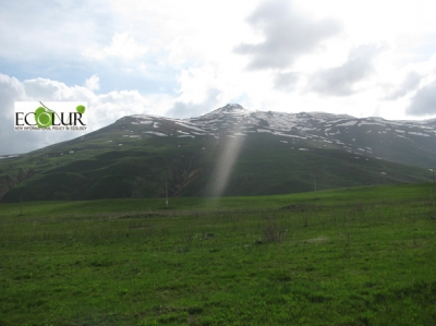 Environmental Activists Hiking to Amoulsar