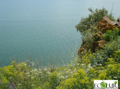 Public Rights and Aarhus Convention Violated when Adopting Law On Increase in Water Outlets from Lake Sevan
