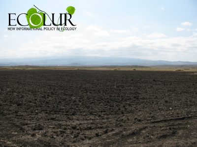 Shirak Region Losing Its Agricultural Land Areas