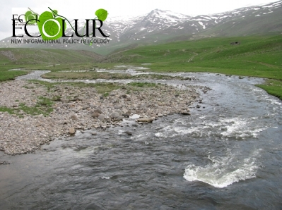 Gizhget River in Crisis