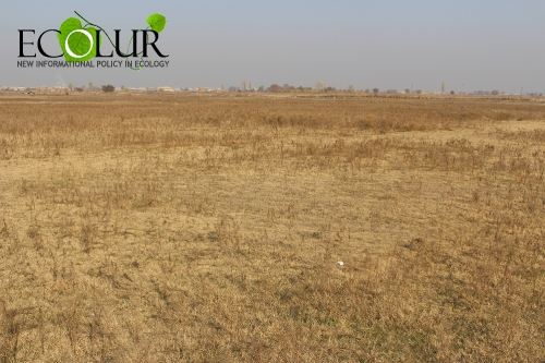 Half of Irrigable Land Areas Not Irrigated in Armenia