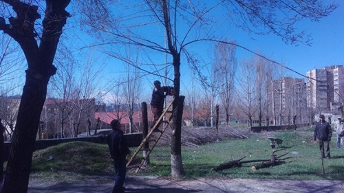 Spring Pruning of Trees Launched in Yerevan (Photos)