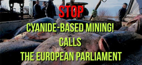 The European Parliament insists on a cyanide ban in mining