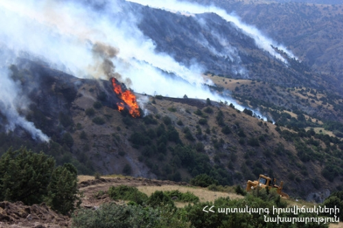 Under Initial Data, 2733 Ha Area Burnt Down in Khosrov Forest Reserve
