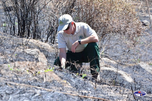 American Experts Recorded that Plant Roots Not Damaged Because of Fire in Khosrov Reserve